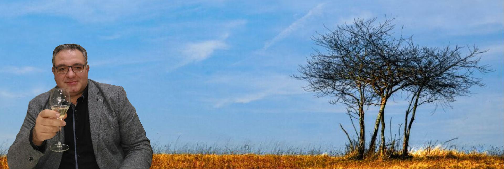 attilio-albero